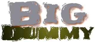 Big Dummy Logo
