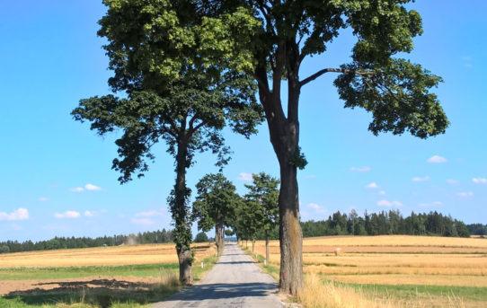 Radtour Waldviertel