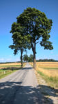 Radtour in Richtung Niederösterreich